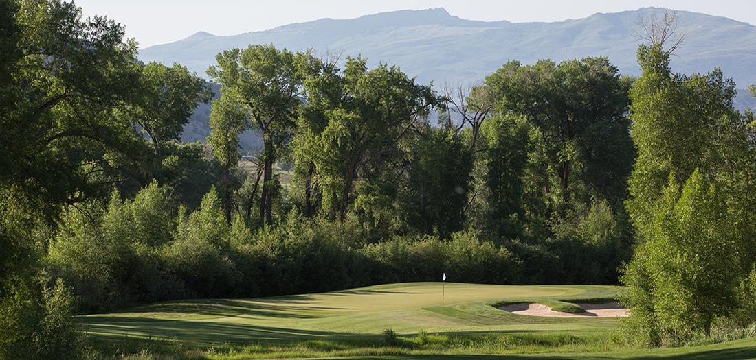 web-14-golf